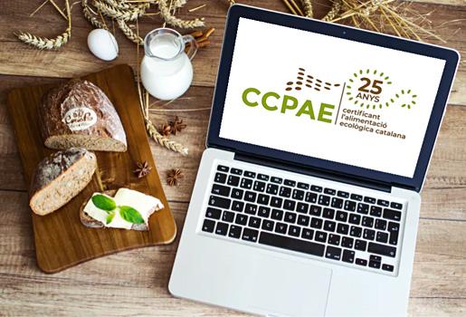 Logotipo CCPAE 25º aniversario